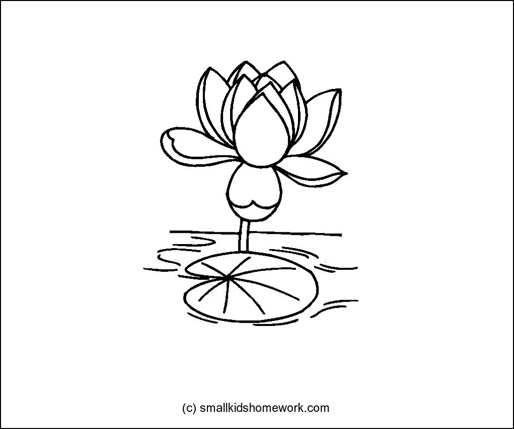 Lotus flower outline and coloring picture with interesting facts lotus mightylinksfo