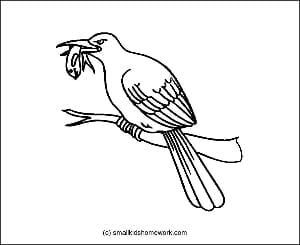 Kingfisher Outline Picture