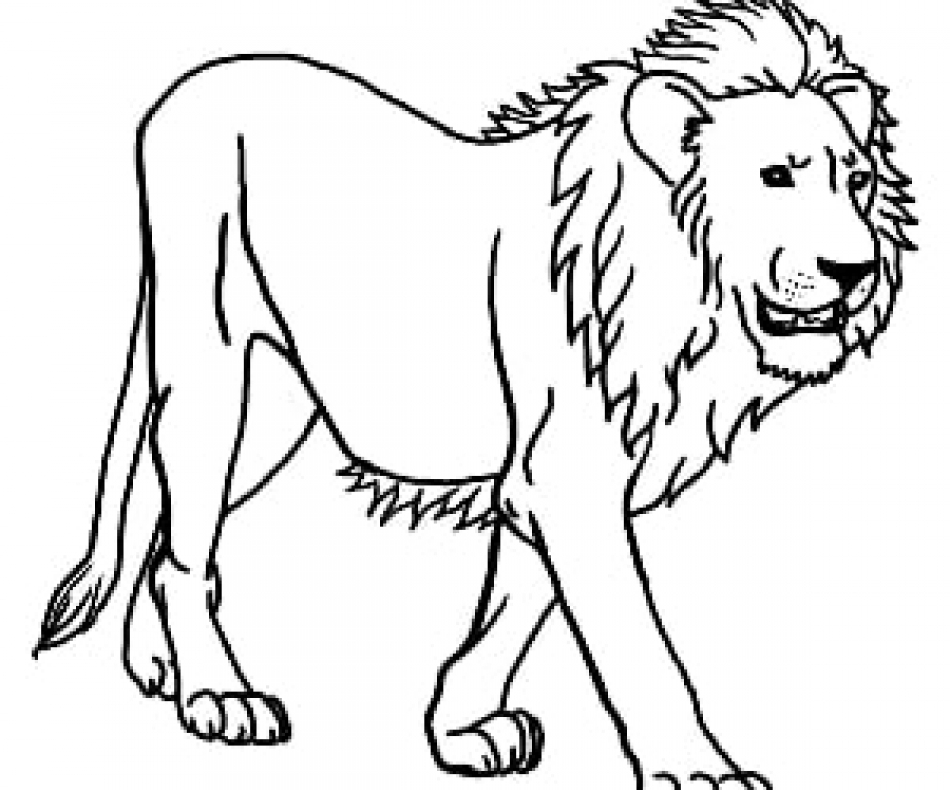 lion outline picture