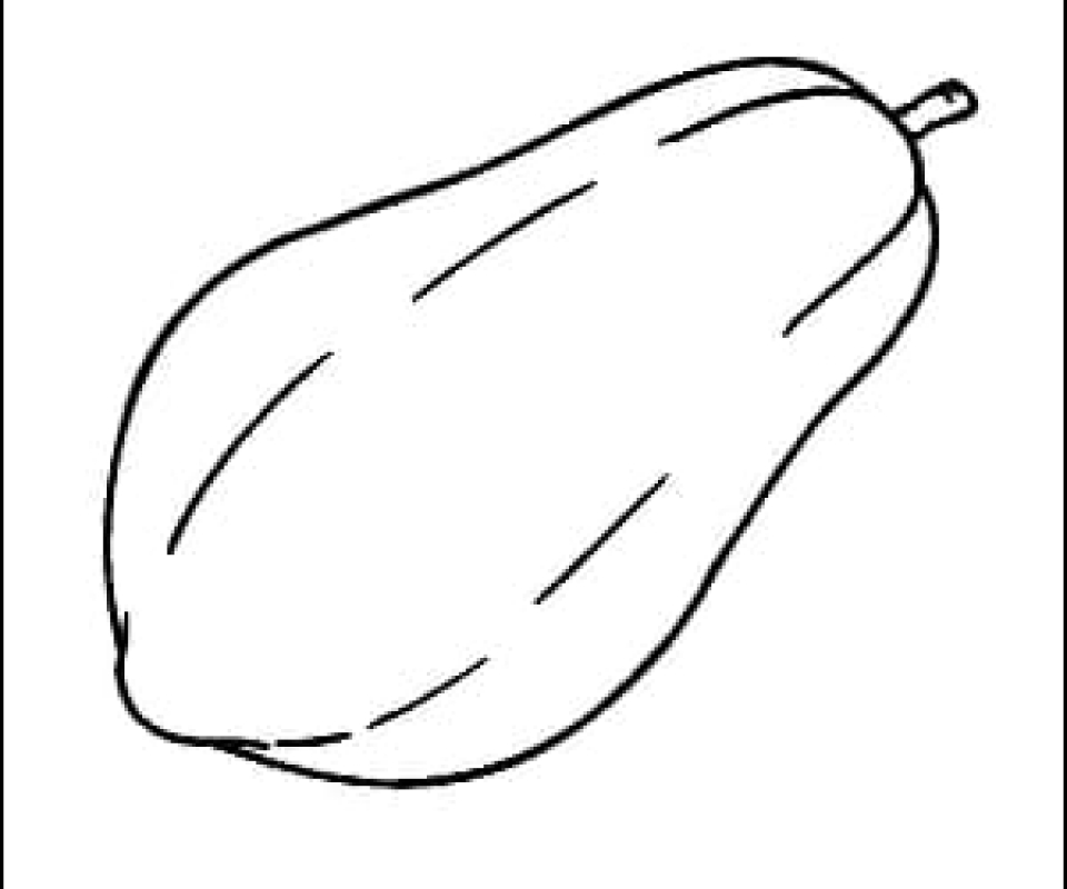 Papaya Outline Picture