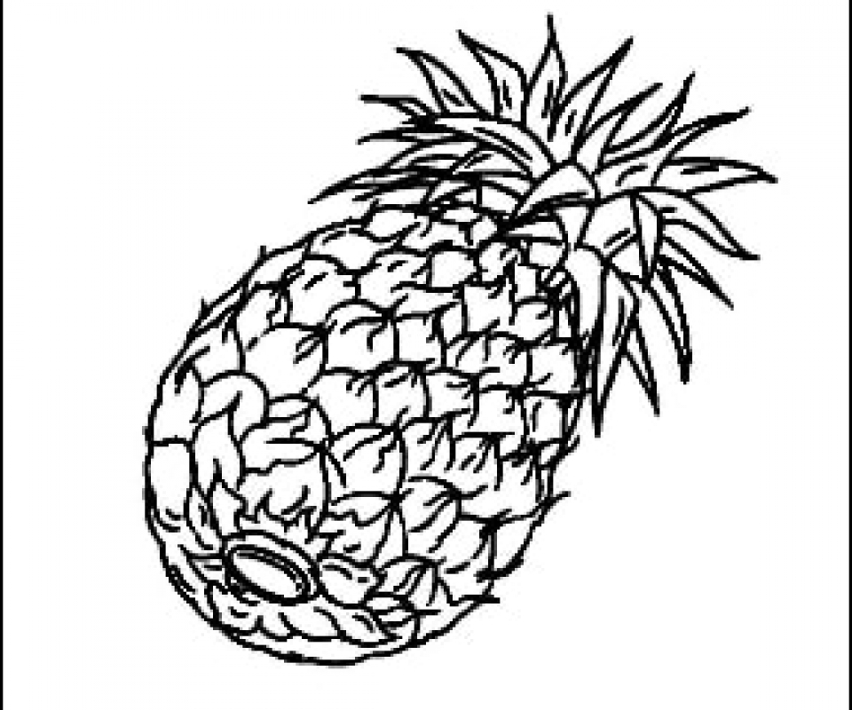 Pineapple Outline Picture