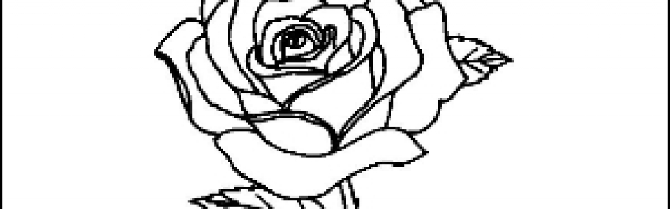 Rose Outline Picture