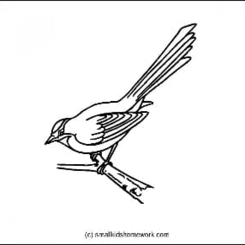 Sparrow Outline Picture