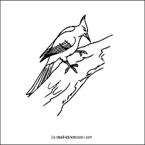 woodpecker outline picture
