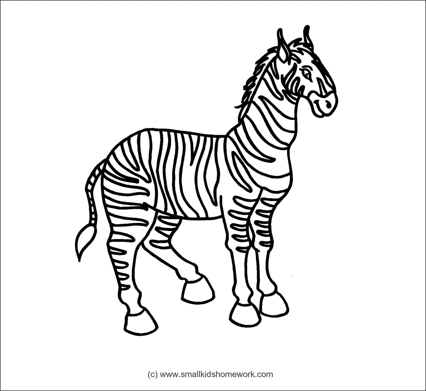 Zebra Outline And Coloring Picture With Interesting Facts
